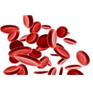 При анемии и для кроветворения